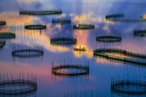 APAS Honor Mention - Beimeng Liu (China) <br /> Xiapu Impression4