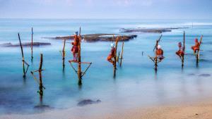 EGIPC Bronze Medal - Yilan Song (Hong Kong) <br /> Stilt Fishing