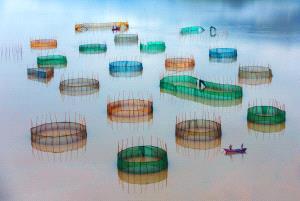 PhotoVivo Silver Medal - Binyuan Li (China) <br /> Encircle A City At Sea