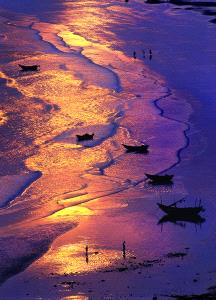 EGIPC Merit Award - Tong Hu (China) <br /> The Golden Beachpipa