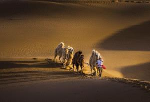 APAS Honor Mention - Guangyao Chen (China)  Desert