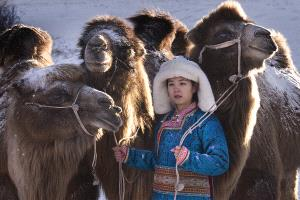 EGIPC Merit Award - Joao Taborda (Portugal)  The Princess And Camels