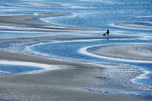 EGIPC Merit Award - Philip Chan (Canada)  Low Tide At White Rock