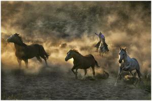 EGIPC Gold Medal - Thomas Lang (USA) <br /> Chasing Mustang 08-01