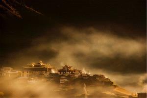 PSA HM Ribbons - Mingzai Su (China) <br /> Morning Mist
